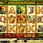 20 Freispiele für den Geldspielautomat Wild Life